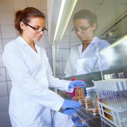 Dowiedz się więcej o stypendiach dla młodych naukowców