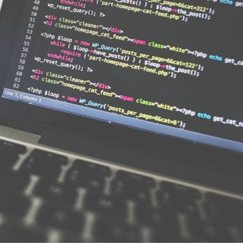 Lokatorzy zatrudniają: poszukiwany programista