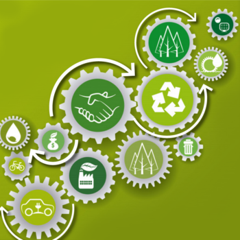 Circular Economy dla biznesu – perspektywy, narzędzia, wdrożenia