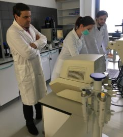 Test na koronawirusa. Case FutureSynthesis