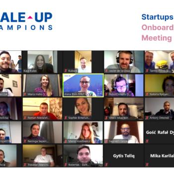 Aktualności Scale-up Champions