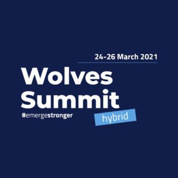Wolves Summit 2021 – międzynarodowe wydarzenie dla startupów i inwestorów